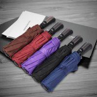 Classic Plain Color Automatic Foldable Umbrella