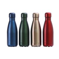 350ml Stainless Steel Insulated Bottle